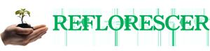 Reflorescer Madeiras